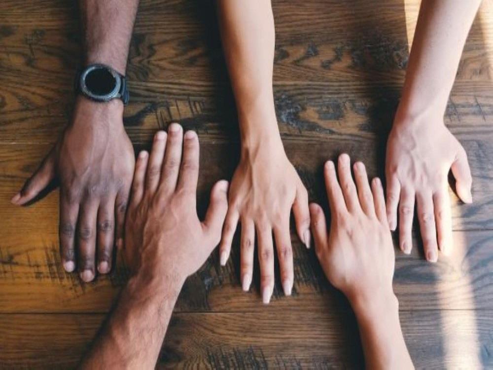 Diversity and Profitability